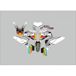 Kit Adhesivos KTM Kini ByN
